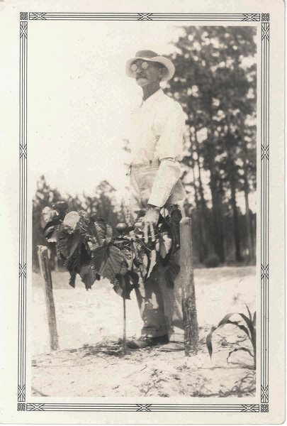 R. M. Leonard on his Florida tung plantation.jpg